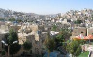 WHA2013_ISRAELPALESTINE2