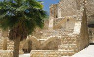 WHA2013_ISRAELPALESTINE4